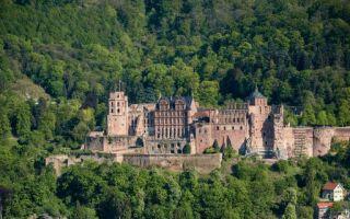 Heidelberg-IFH-Koeln-Studie.jpg