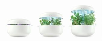 Bosch-Smart-Grow.jpg