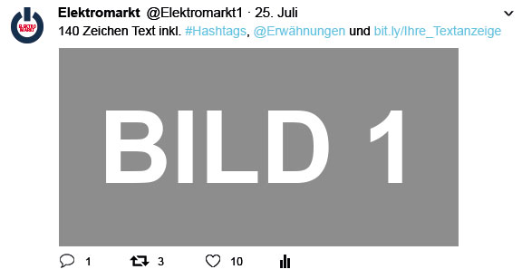 EM_Ansicht_Twitter_Mediadaten